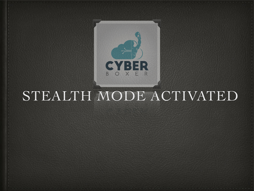 Cyber Boxer Stealth Mode Activated.001